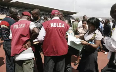 NDLEA arrests 85 suspects, seizes 55kg drugs in Ebonyi