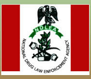 NDLEA Arrests Woman Feigning Pregnancy With Wraps Of Cocaine