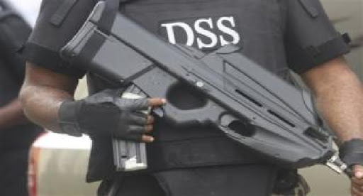 DSS uncovers plots to bomb Computer Village Lagos, worship centres, parks