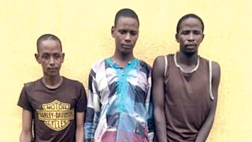 Police parade suspected killers of Dangote's strategist