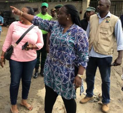Lagos vows to sanction violators of greening laws