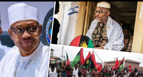 Biafra: IPOB are thieves not freedom fighters, says Buhari